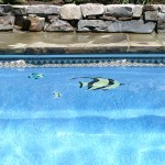 Mosaics Viking Fiberglass Swimming Pools 25