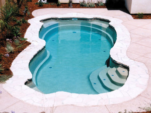 Free form swimming pools in maryland virginia dc for Pool designs venice